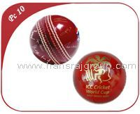 Promotion Cricket Products