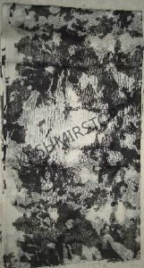 Printed Cashmere Shawls