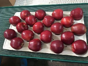 Fresh Italian Apple