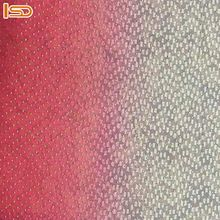 Lace Embroidered Net Fabric