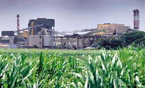 Sugar Mill Full Plant