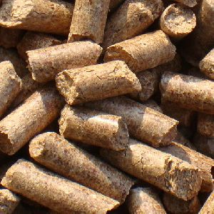 family use the wood pellet in the stove