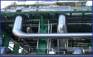 Cold Thermal Insulation Services