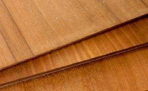 Veneer Plywoods