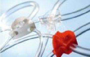 Veterinary Dialysis Bloodline Set