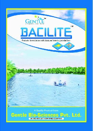 Bacilite Powder Feed Supplement