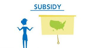 Subsidy Consulting Services