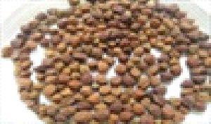 Bengal Gram Whole (kala Chana)
