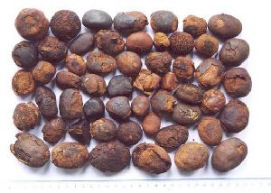 Ox Gallstones, Cattle Gallstones, Cow Gallstones