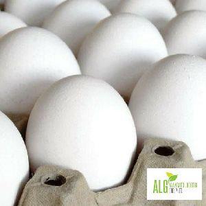 Fresh Chicken Table Eggs (ukraine Origin)