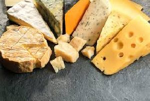 Dairy Cheese Concentrates
