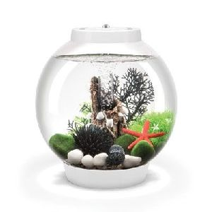 Baby biOrb Aquariums