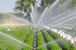 Sprinkler Irrigation Service