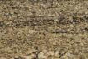 Juparna Classico Granite