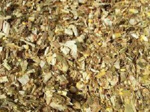 Betel Nut Shells