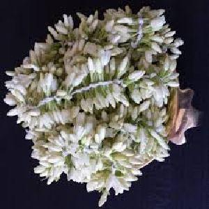 Mullai Flower Strings