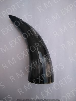 Viking Drinking Horn Without Cap