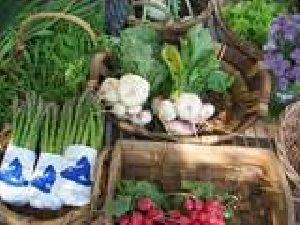 Organic Food Basics