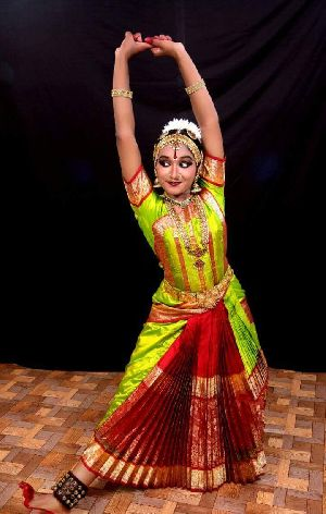 669b8d9f1c30b Bharatanatyam Costume - Manufacturers, Suppliers & Exporters in India
