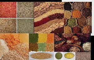 Spices, Grain, Pulses.