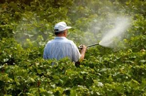 Bio Organic Pesticides