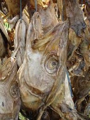 Dry Stock Fish Cod For Sale