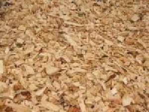 Wood Chips From Pine And Oak