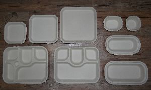 Eco Friendly Disposable Trays