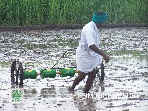 manual rice seed planter