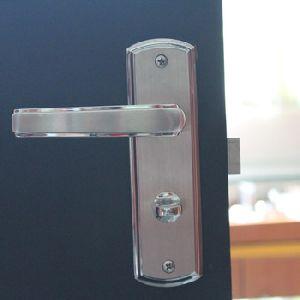 Stainless Steel Door Locks