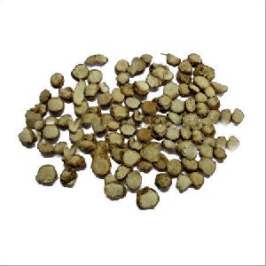 Zedoary Root Extract Powder