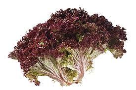 Fresh Red Broccoli