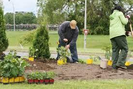 Garden Contractor Services