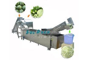 Cabbage Washing And Dicing Production Line
