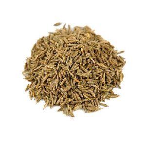 Bitter Taste Cumin Seeds