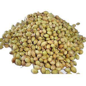 Row Coriander Seeds