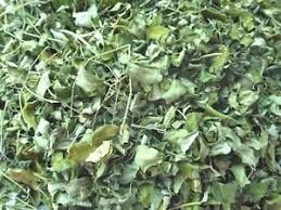 Certified Dried Moringa Leaves