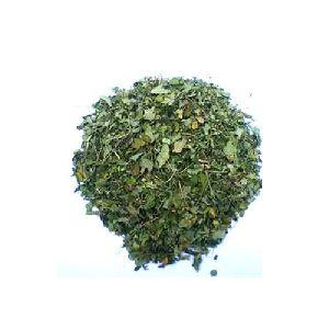 Moringa Natural Dry Leaves