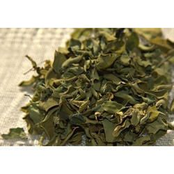 Organic Moringa Dried Leaves