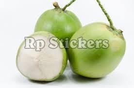 Organic Green Tender Coconut
