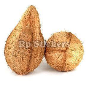 Semi Husked Fresh Coconut