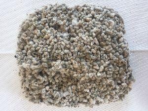 Raw Cotton Seeds