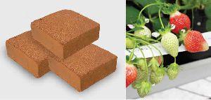 Cocopeat/coir Blocks