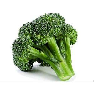 Organic Green Broccoli