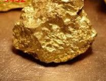 gold dust nuggets