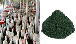 Spirulina Poultry Feed Supplement