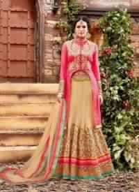 Beige Colored Net Bridal Lehenga