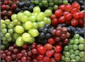 Grapes Oil Seed