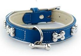 fashionable dog collars