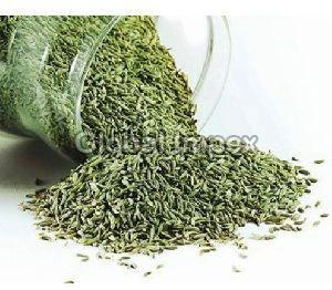 Saunf Seed